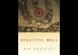 2016 MN Book Award Finalist for Poetry: Beautiful Wall